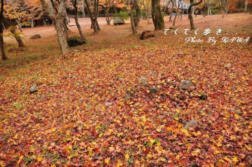 1稲荷山10.11.28