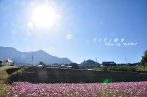 9上林10.12.05