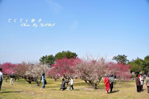 2桜井11.02.27