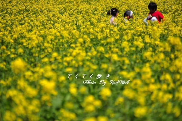 6五郎11.03.13