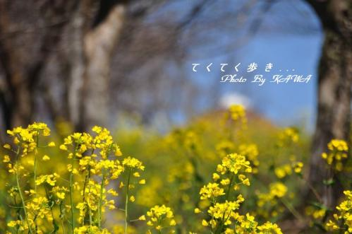 7旅行村11.03.13