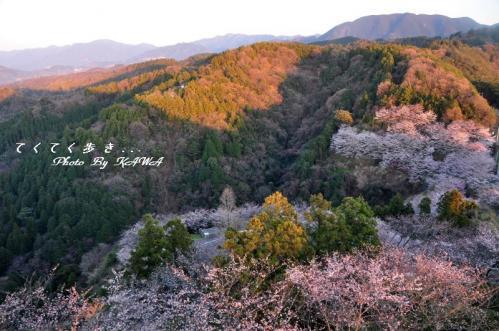 1谷上山11.04.05