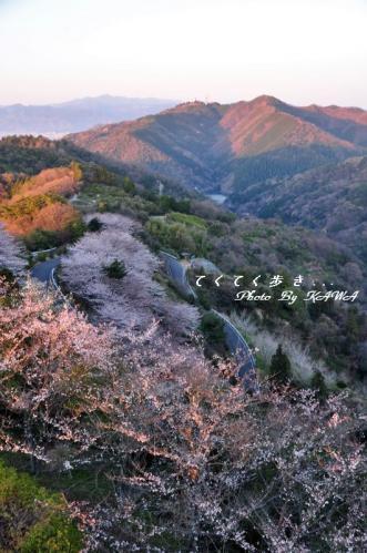 2谷上山11.04.05