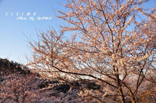 3谷上山11.04.05
