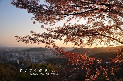 8瀬戸風11.04.12