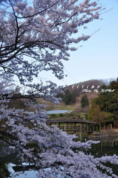 5弓削神社11.04.10