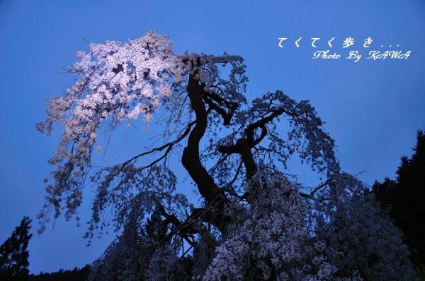 7中津11.04.16