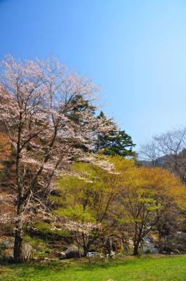 1小田深山11.04.29