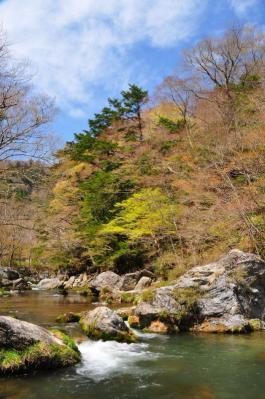 4小田深山11.04.29