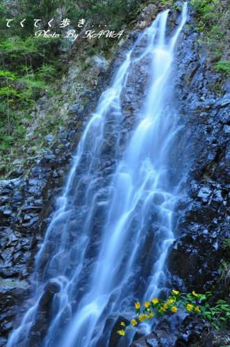 1銚子の滝11.04.29