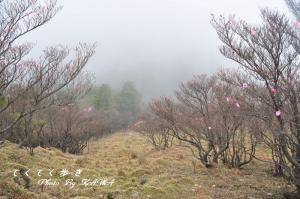 3篠山11.05.03