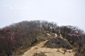 4篠山11.05.03
