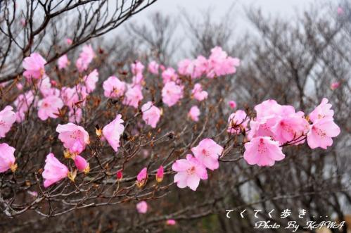 5篠山11.05.03