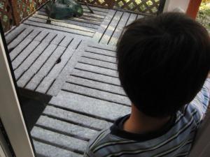 初雪2009