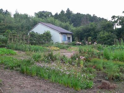 写真キャプション=今回、多くの本が送り込まれた「畑の家」