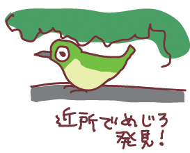 110123mejiro.jpg
