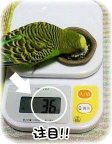 体重増加!?