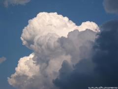 雲だけ!!