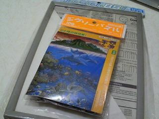 NEC_2688.jpg