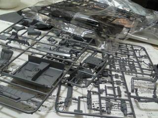 NEC_2805.jpg