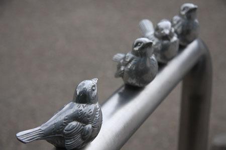 大阪城は鳥のメッカ?
