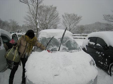 車が雪の餌食に!