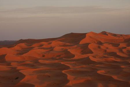 赤く染まる砂漠
