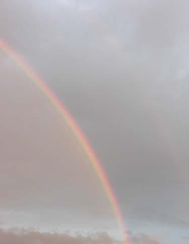 rainbow_s.jpg