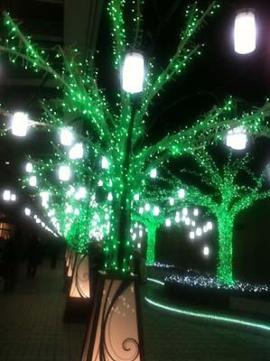tree_g.jpg