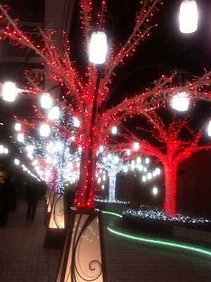 tree_r.jpg
