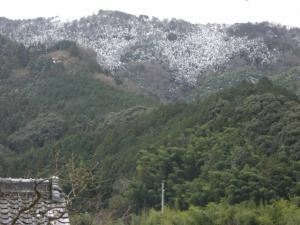 雪の残る山