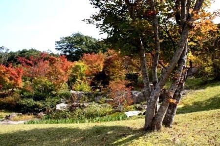 10-15_20091020191110.jpg