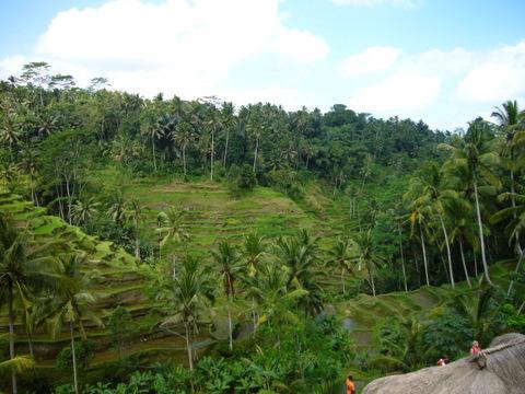 バリ島17