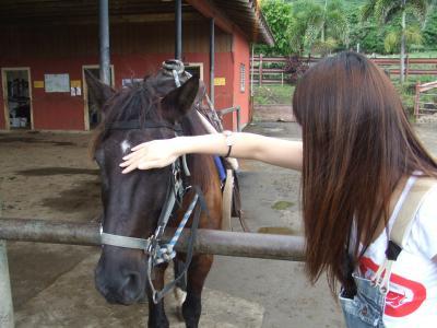 ハワイでママ乗馬
