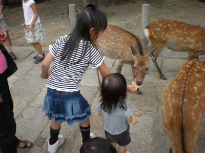 yun奈良公園2009.9