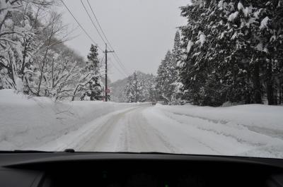 2011.01鳥取雪真っ白
