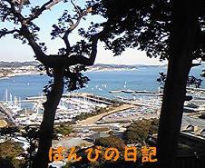 100110_124058_ed_ed.jpg