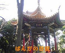 100110_124717_ed_ed.jpg