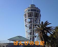 100110_131834_ed_ed.jpg