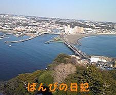 100110_133928_ed_ed.jpg