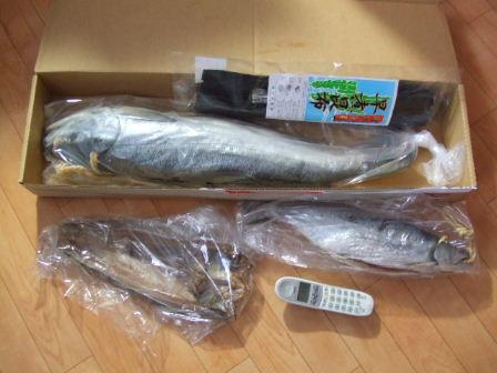 鮭パック2