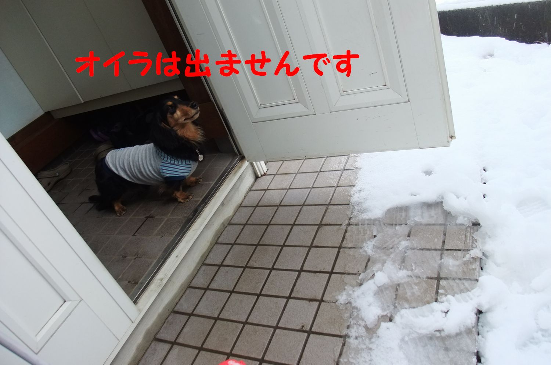 yuta20120229-2.jpg