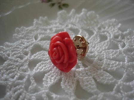 2010.10.25赤薔薇7
