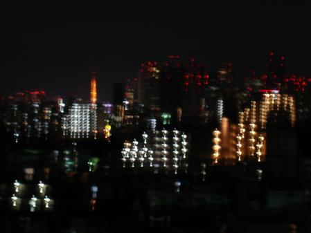 2011.1.3夜景2