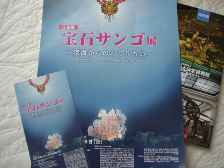 2011.4.24サンゴ展1