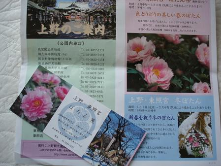 2011.4.24サンゴ展2