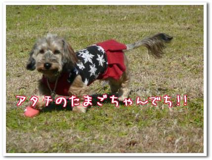 iYd1Geg5.jpg