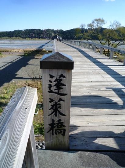掛川花鳥園&蓬莱橋 (12)