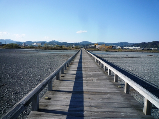 掛川花鳥園&蓬莱橋 (13)