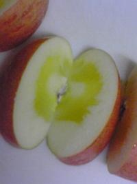20091210蜜入りリンゴ